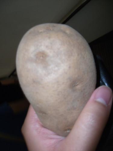 otakon2013-potato